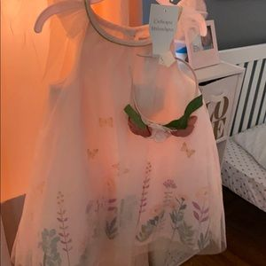 Toddler girls dress BNWT